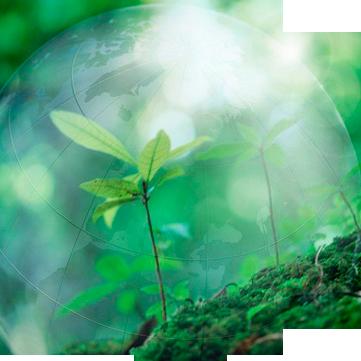 Картинки по запросу екологія